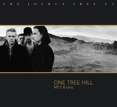 the-joshua-tree-one-tree-hill