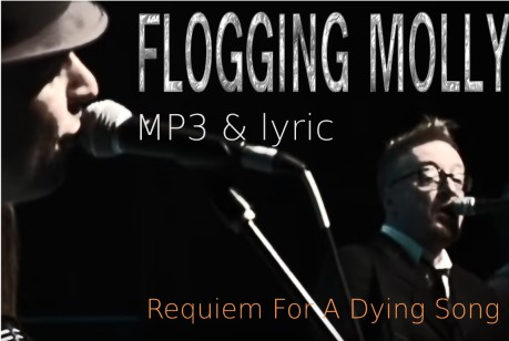 flogging molly, mp3